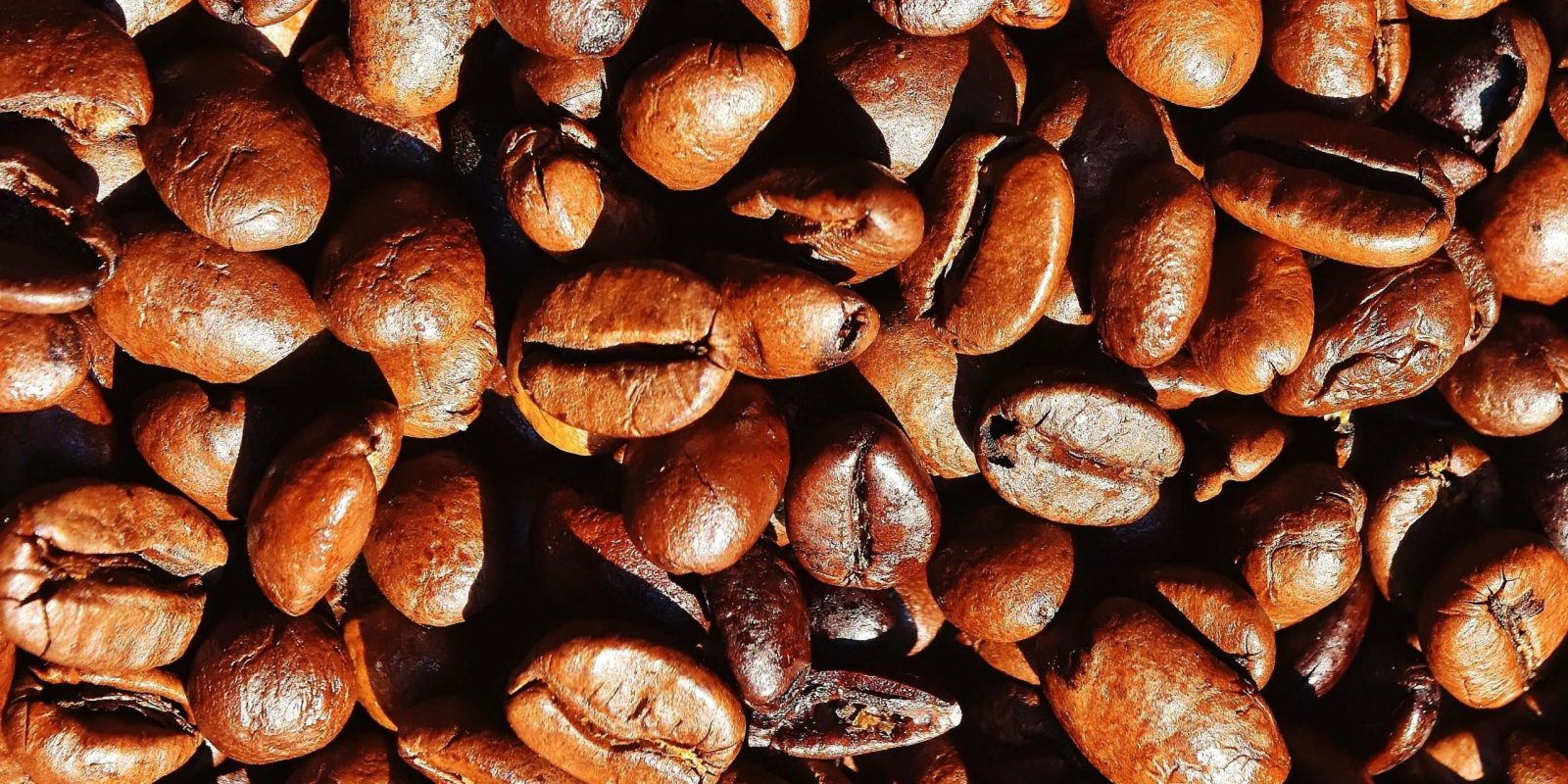 type de café café marque café grain café moulu café wikipédia café plante café nespresso