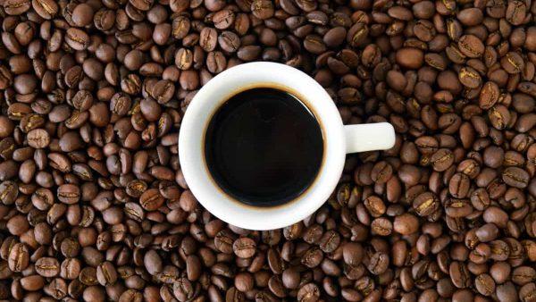 café equitable café bio cafe non bio
