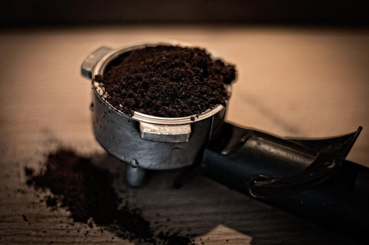 marc de café tomates marc de café répulsif marc de café désherbant marc de café dans les toilettes marc de café jardin fourmis marc de café rosier marc de café jardin marc de café pelouse